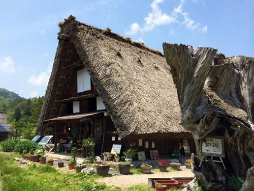 shirakawago012