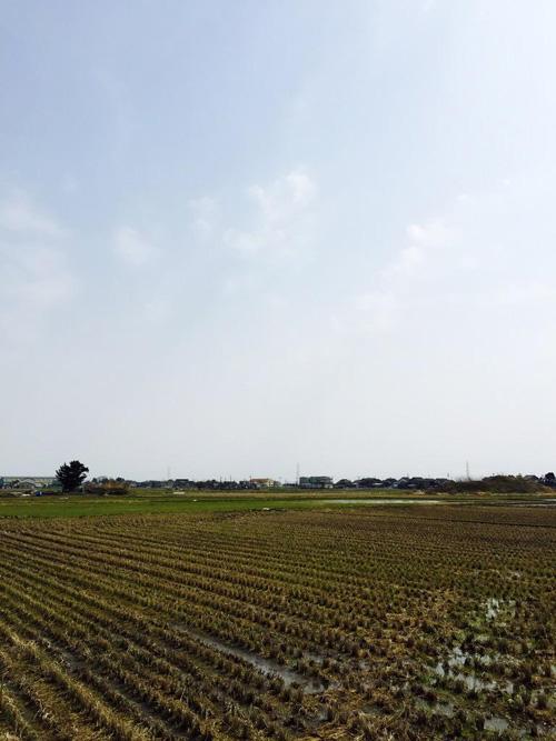 toyama-201503-012