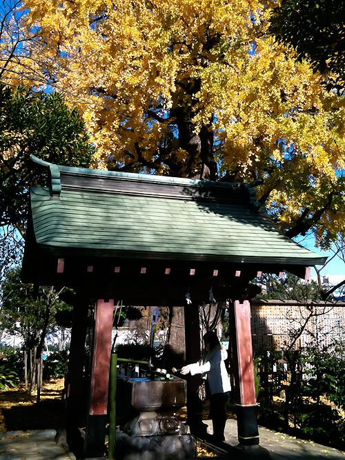 tokyo-princehotel-parktower-023