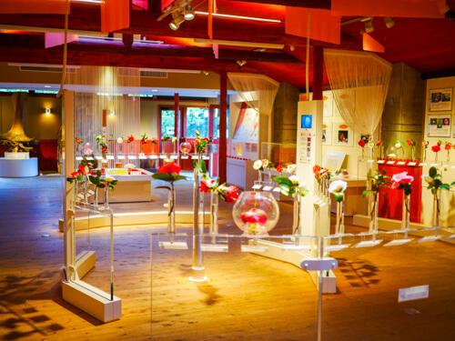 都立大島公園の「椿資料館」