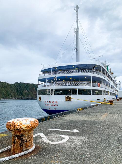 東海汽船の大型客船「さるびあ丸」